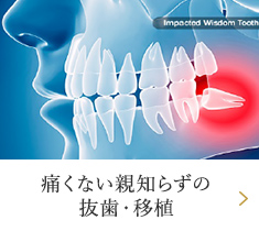 痛くない親知らずの抜歯・移植